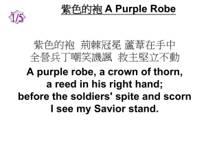 紫色的袍A Purple Robe