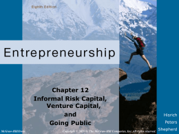 [08]. Informal Risk Capital, Venture Capital and Going Public