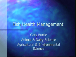 Fish Health Management - UGA College of Agricultural and