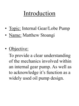 Internal Gear/Lobe Pump