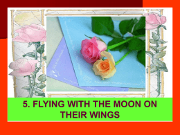 5. FLYING WITH THE MOON ON THEIR WINGS