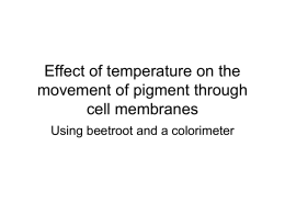 Effect of temp on membranes