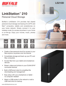 LinkStation™ 210