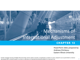 Chapter 13 Mechanisms of International Adjustment