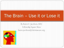 The Brain * Use it or Lose it
