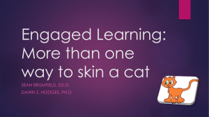 Engaged Learning: More than one way to skin a cat