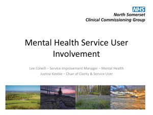 Mental Health Service User Involvement in North Somerset
