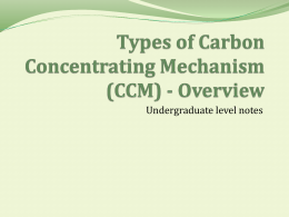 Types of Carbon Concentrating Mechanism (CCM