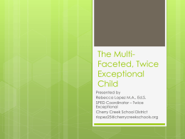 The Multi-Faceted, Twice Exceptional Child