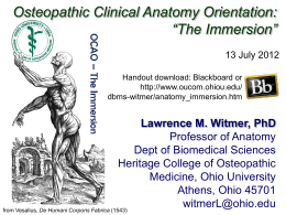 The Immersion - Ohio University College of Osteopathic Medicine