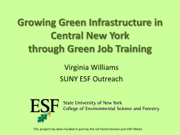 Growing Green Infrastructure through Green Job Training