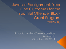 Youthful Offender Block Grant: First Year Outcomes