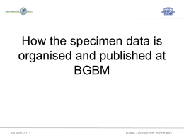 How the specimen data is organised and published at BGBM