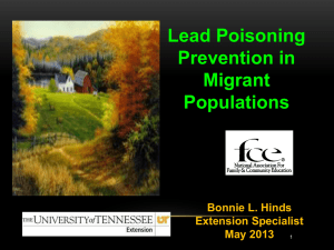 Lead Poisoning Powerpoint - Tennessee Opportunity Programs