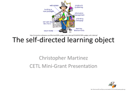 The self-directed learning object