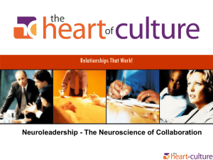 Neuroleadership - The Neuroscience of Collaboration