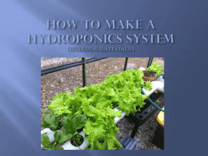 hydroponics systems powerpoint comp
