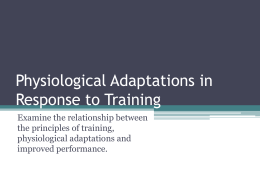 Physiological Adaptations in Response to Training