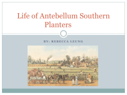 Life of Antebellum Southern Planters
