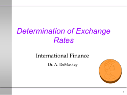Determination of Exchange Rates