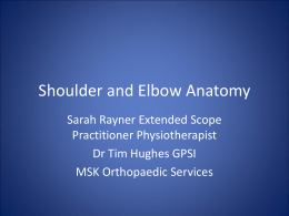 Shoulder anatomy (MS Powerpoint)