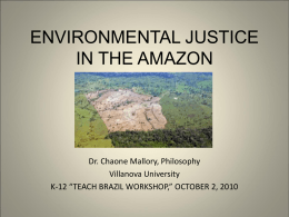 ENVIRONMENTAL JUSTICE IN THE AMAZON