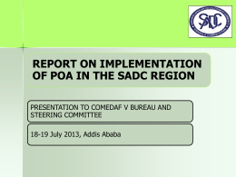 Presentation: Report on Implementation of POA in the SADC Region