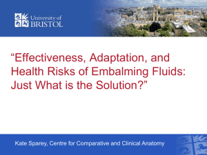 Effectiveness, Adaptation, and Health Risks of Embalming Fluids