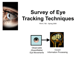 Eye Tracking Techniques