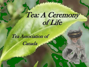 Tea_A_Ceremony_of_Life_-_June_23_2006