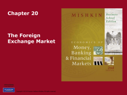 Chapter 20 The Foreign Exchange Market