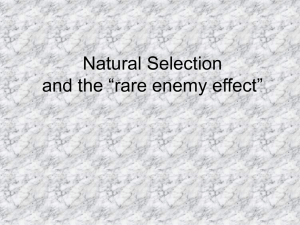 "Natural Selection and the ""rare enemy effect"""