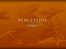 Chapter 3: Consumer Learning: Perception