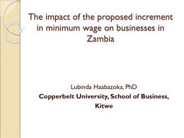 Overview of Zambia`s Labour Market