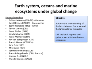 Earth system, oceans and marine ecosystems under global change