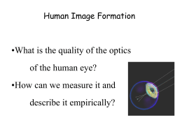 Human Image Formation - Stanford Vision and Imaging Science and