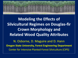 Modeling the Effects of Silvicultural Regimes on Douglas