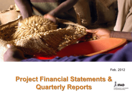 Project Financial statements & quarterly reporting