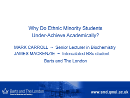 Why do ethnic minority students under