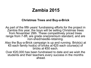 Zambia 2015 Christmas Trees and Buy-a