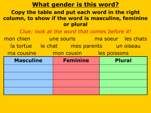 French Adjective Powerpoint
