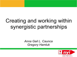 Synergistic Partnerships - American Red Cross Youth
