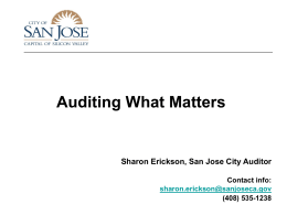 Auditing_What_Matters_1-27