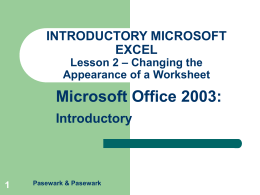 UNIT 3 – EXCEL Lesson 2 – Changing the Appearance of a