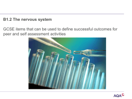 B1.2 The nervous system