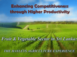 Mr. Rizvi Zaheed – Fruit and Vegetable Sector