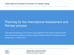 Planning for the International Assessment and Review