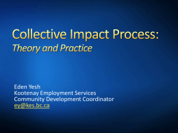 Collective Impact: Theory and Practice, a case study in