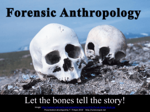 Bone Basics (PPT) - The Science Spot