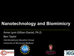 Nanotechnology and Biomimicry Powerpoint